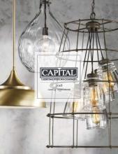 Capital_国外灯具设计