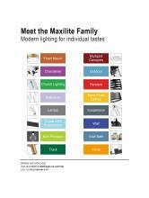 MAX Light 2021年欧美知名现代灯饰灯具设计-2792807_灯饰设计杂志