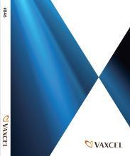 vaxcel Lighting_国外灯具设计