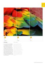 BRUCK 2021年欧美室内现代简约灯饰及日用照-2854807_灯饰设计杂志
