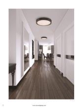 Access Lighting 2021年国外灯饰灯具设计素-2856365_灯饰设计杂志