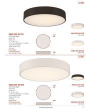 Access Lighting 2021年国外灯饰灯具设计素-2856368_灯饰设计杂志