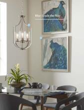 Progress LIghting 2021年国外灯饰设计书籍-2850253_灯饰设计杂志