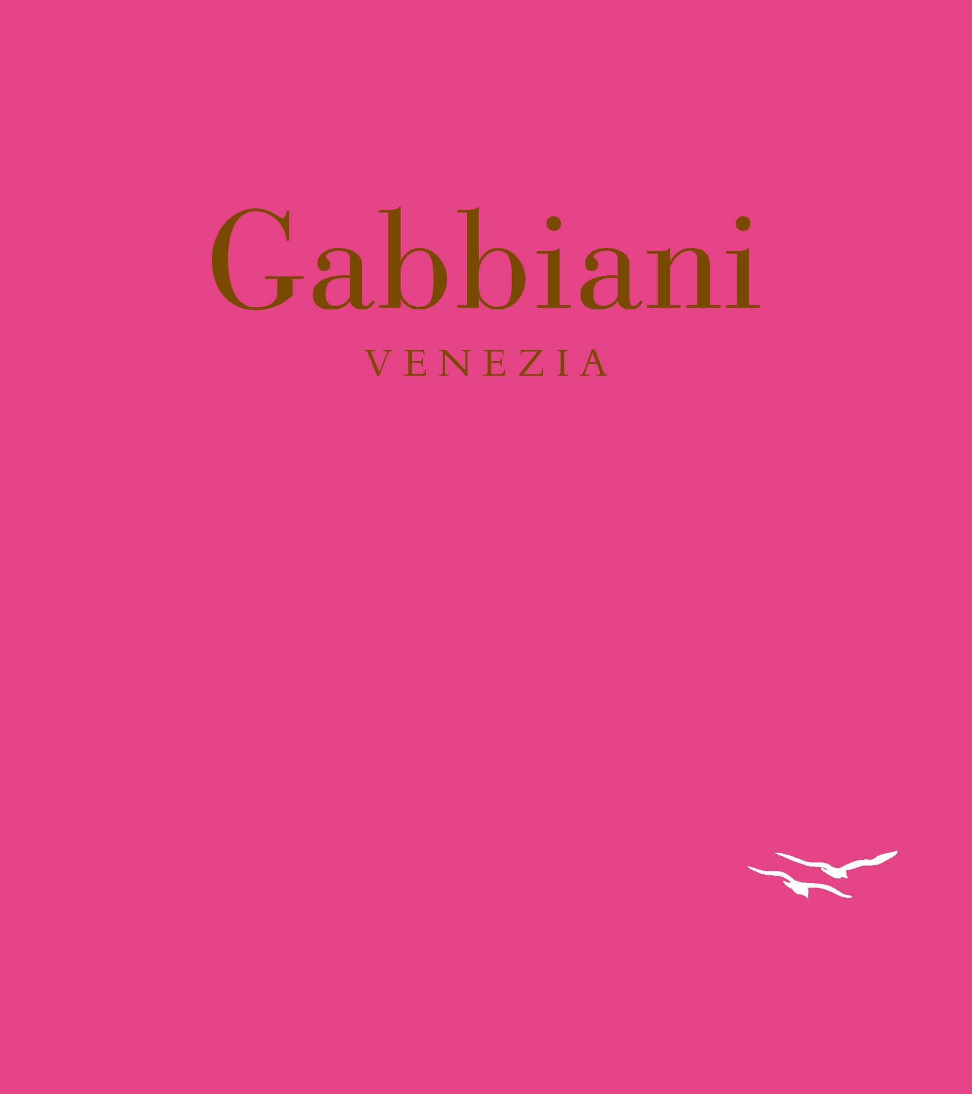Gabbiani venezia